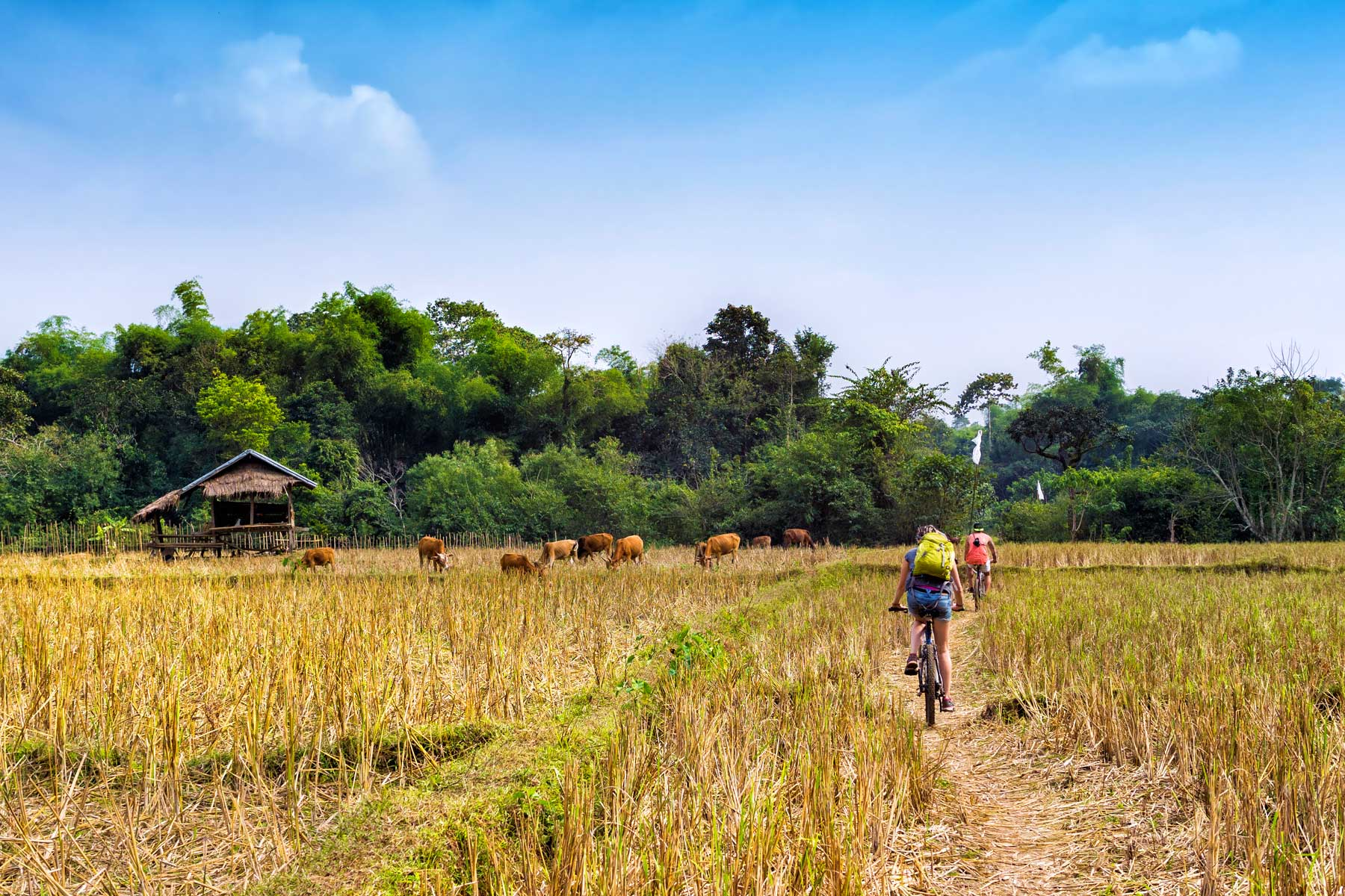 Burma cycling holiday - Myanmar bike tour